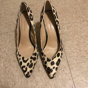 Leopard Print Beige Pumps Heels